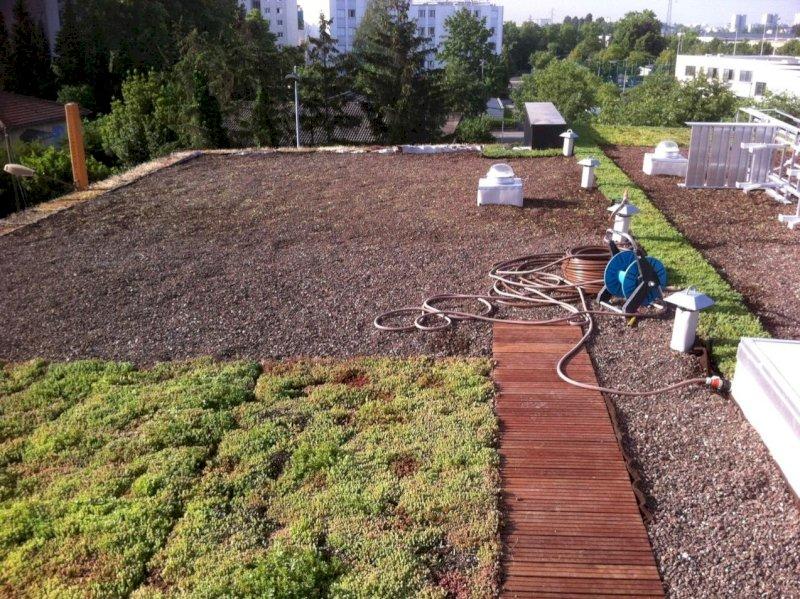Installation d'un toit végétal